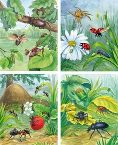 1 million+ Stunning Free Images to Use Anywhere Drawing For Kids, Art For Kids, Diy Booklet, Hungry Caterpillar Craft, Insect Crafts, Flower Painting Canvas, Bug Art, Free To Use Images, Kids Wall Decals