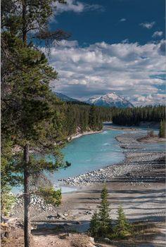 ✯ Athabasca River - Jasper National Park, Canada