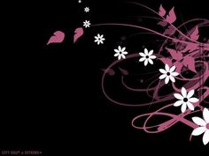 Black Hello Kitty Wallpapers Group