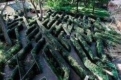 For when you've exhausted all options in the City, get on the road to SkyHigh. Amazing Maze, Beautiful Forest, Great Restaurants, Sky High, Topiary, Hedges, Landscape Architecture, Wander, Garden Design
