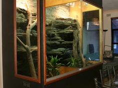 arboreal enclosures - Google Search