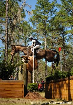 Photo by Kat Netzler Last Call picked up second place in her first appearance at the Red Hills CIC*** with longtime rider Allie Knowles, finishing cross-country with 10.0 time faults. | The Chronicle of the Horse