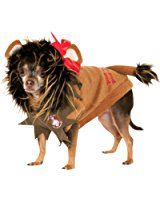 Rubies Costume Wizard of Oz Collection Pet Costume