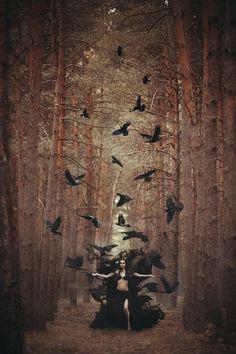 The Gothic Witch Foto Fantasy, Dark Fantasy, Fantasy Art, Witch Craft, Arte Obscura, Fantasy Photography, Kraken, Gothic Art, Dark Beauty