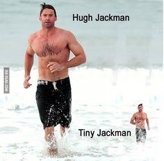 Hugh Jackman memes [FOTOS]   ActitudFEM