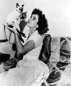 Elizabeth Taylor with her Siamese kitten Beauty -1949