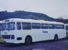 Buses, New Zealand