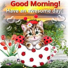 Good morning sister and yours, have a nice Friday and a Lovely weekend, God bless, ☕😄💞 Good Morning Happy Saturday, Good Morning Sister, Cute Good Morning Quotes, Morning Quotes For Him, Morning Greetings Quotes, Good Morning Picture, Good Morning Love, Good Morning Messages, Morning Pictures
