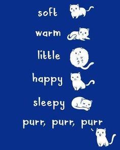 Geek Gear: The Big Bang Theory 'Soft Kitty' Shirt - Geeks of Doom Big Bang Theory, The Big Theory, Soft Kitty Warm Kitty, Here Kitty Kitty, Happy Kitty, Kitty Cats, Crazy Cat Lady, Crazy Cats, The Bigbang Theory