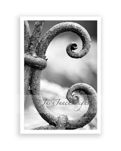 Letter C Alphabet Photography Individual 4x6 by JavaJaneDesigns. $4.00, via Etsy.
