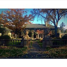 Fall at Glendon Hall🍂🌳! It's a kinda day. York University, School Photography, Toronto, College, Mansions, Interior Design, Architecture, House Styles, Instagram Posts