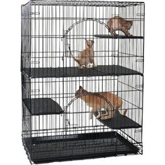 ProSelect Plastic Cat Deluxe Platforms, Set of 3 *** Very kind of you to drop by to visit our picture. (This is our affiliate link) Cat Cages, Plastic Laundry Basket, Platforms, Pet Supplies, This Is Us, Drop, Pets, Link, Pet Products
