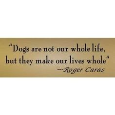 Great dog quote