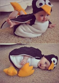 Bean is going to be a penguin for Halloween!