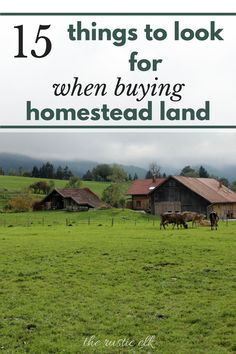 15 Things to Look for When Buying Homestead Land Buying land to homestead is a big deal and often a large investment of time and money. Make sure you choose wisely with these 15 tips when choosing your perfect property to farm and homestead. Homestead Land, Homestead Living, Farms Living, Homestead Survival, Survival Skills, Homestead Homes, Homestead Property, Survival Prepping, Emergency Preparedness