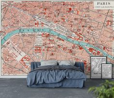 Vintage Paris map Tapet