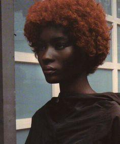 Dark Skin Beauty, Hair Beauty, Dark Skin Red Hair, Black Beauty, Black Hair, Pretty People, Beautiful People, Hair Afro, Skin Girl