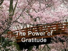 """Gratitude is the fairest blossom which springs from the soul.""  ~ Henry Ward Beecher"