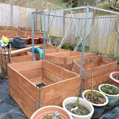 Fruit cage up just need to add netting.#fruitgarden Fruit Cage, Fruit Garden, Allotment, Raised Beds, Life Is Good, Outdoors, Outdoor Decor, Orchards, Flower Beds