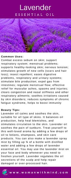 Lavender Essential Oil Guide & Application #essentialoils #diybeauty