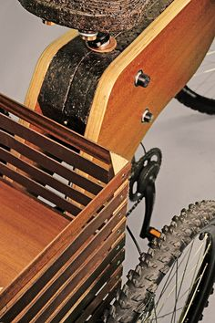 RAIOOO - Electric Wooden Tricycle by MEDEIN IPVC, via Behance