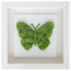Moss Wall Art by Oliver Gal. See our huge selection of beautiful finished moss decor designed to give any room a unique look. Moss Wall Art, Moss Art, Diy Wall Art, Diy Wooden Projects, Diy Art Projects, Oliver Gal Art, Moss Graffiti, Moss Decor, Succulent Wall Art