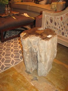Petrified wood as side table.....Gary would love!