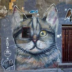 by Pijanista in Belgrade, Serbia #art #streetart #cat #mural #nicestreetart #graffiti #urbanart