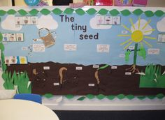 Living Things - The tiny seed classroom display photo - Photo gallery - SparkleBox Class Displays, School Displays, Classroom Displays, Photo Displays, Preschool Garden, Preschool Classroom, Classroom Ideas, Plant Science, Science Fair