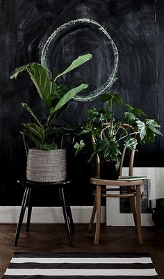 WABI SABI Scandinavia - Design, Art and DIY. Love the green against the blackboard!