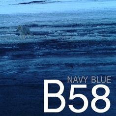 B58, navy blue, blau marí, azul marino. En SNAPCLIC.es Navy Blue, Colors
