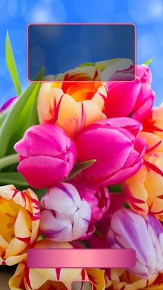 ↑↑TAP AND GET THE FREE APP! Lockscreens Art Creative Flowers Sky Multicolour For Girls HD iPhone 6 Plus Lock Screen