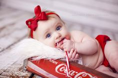 6 month old baby portraits