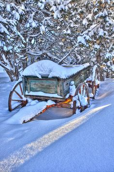 Old wagon after heavy snow fall in Navajo National Monument, Arizona Winter Images, Winter Pictures, I Love Winter, Winter Time, Navajo National Monument, Old Wagons, Winter Scenery, Snow Scenes, Winter Beauty