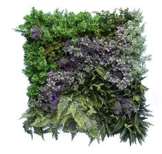 Artificial Green Walls. Faux green wall panels to create a maintenance free vertical garden / artificial living wall. UV proof, suitable for outdoor use. From artificialgreen.co.uk
