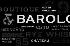 Barracuda Display Font by vatesdesign on Creative Market