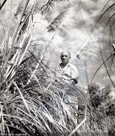 Robert Doisneau, 1912-1994 (France)  Title : Portraits de Blaise Cendrars dans son jardin, Aix-en-provence, (2)   Date : 1945/1950