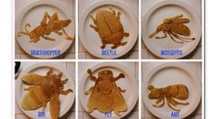 """Nathan Shields took up the craft of """"pancake art"""" after moving from the US state of Oregon to the tropical island of Saipan in the Pacific Ocean."""