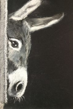 I love this gorgeous little Donkey by Sara - very cute!