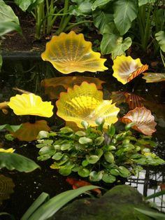 London, England: Kew Gardens: yellow 'water lilies' (glass artist Dale Chihuly)
