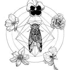 Cicada   #cicada  #bug  #draw  #drawing  #sacred geometry  #geometry  #ink  #flowers  #flower  #carla romero  #cigarra  #sho  #geometria  #dibujo  #illustration  #ilustración  #flor  #floral  #flores  #insecto