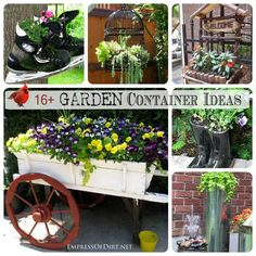 How's this for a little winter cheer? Now is a great time to be planning the spring garden. I've been collecting ideas for creative garden containers wherever I… Container Plants, Container Gardening, Gardening Tips, Plant Containers, Flower Containers, Vegetable Gardening, Garden Projects, Garden Ideas, Garden Fun