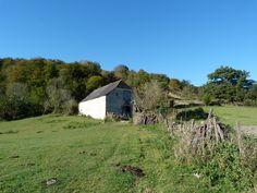 Borde vers Roquiague  (montagne basque).
