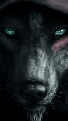 Fantasy/Wolf Wallpaper ID: 770841 - Mobile Abyss Wolf Eyes, Wolf Face, Wolf Photos, Wolf Pictures, Wolf Wallpaper, Animal Wallpaper, Mobile Wallpaper, Desenhos Hanna Barbera, Alpha Wolf