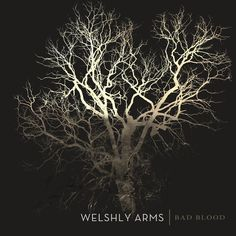 Bad Blood, a song by Welshly Arms on Spotify