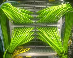 Running cables into the patch panels. Do you need cable… Network Organization, Contemporary Baskets, Structured Cabling, Server Rack, Network Cable, Computer Network, Real Hero, Cool Tech, Electrical Engineering
