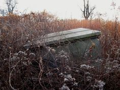 Casket at abandoned cemetary