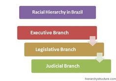 Racial Hierarchy in Brazil