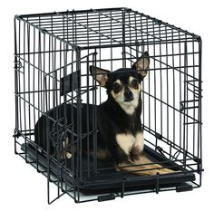 Icrate Metal Dog Cage Midwest Folding Kennel Crate Pet Puppy 18 iches W Dividers  | eBay