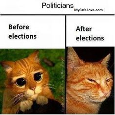 Politicians before and after Elections funny images